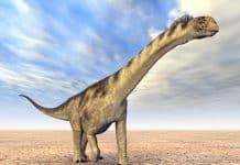 Dinozaurii, povestea lor